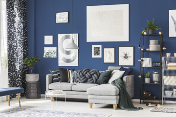 Navy blue room with gallery