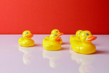 A group of ducks follwing big duck. Leadership conceptual.