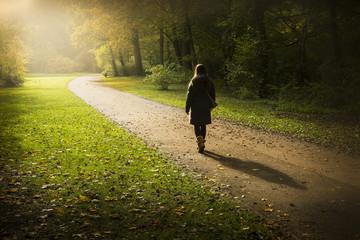 Walking Around Tiergarten