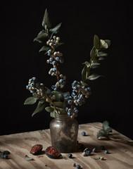 Blueberry bush still life