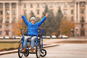 Happy boy in wheelchair outdoors on autumn day