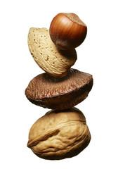 Hazelnut, Almond, Brazil Nut and Walnut