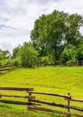 wooden fence on grassy rural field with tree. lovely springtime scenery