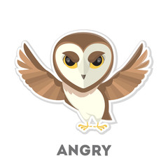 Isolated angry owl.