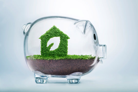 Grass growth eco house fund concept