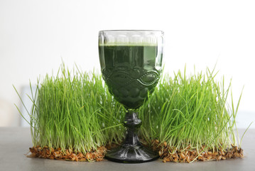 Glass of healthy juice and sprouted wheat grass on light background