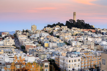 Canvas Prints San Francisco Coit Tower on Telegraph Hill as seen from Russian Hill at Sunset. San Francisco, California, USA.