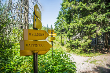 "Hiking Signpost to ""Wellness"" and ""Happiness"""