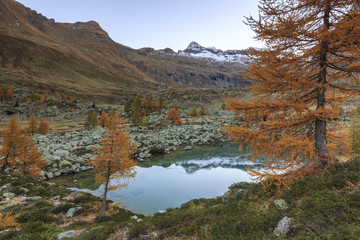 Lombardy, Italy, autumn in Painale valley. Scalino peak reflected in Painale lake