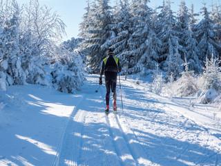 Langlaufski Wintersport