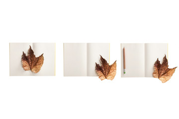 set of paper note spread with leaf isolated on the white background.