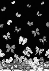 Vector vertical seamless pattern with hand drawing detailed colorful butterflies. White gray on black background.