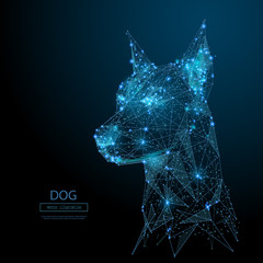 Abstract image of head of the dog in the form of a starry sky or space, consisting of points, lines, and shapes in the form of planets, stars and the universe. Vector animal. RGB Color mode