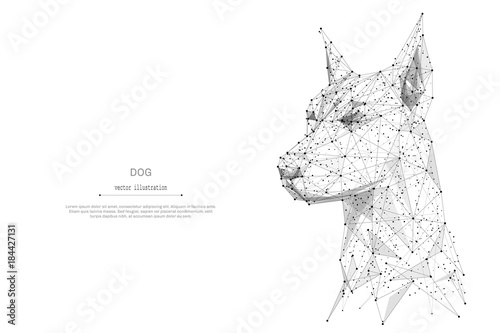 Abstract Mash Line And Point Head Of The Dog Origami On White Background With An Inscription