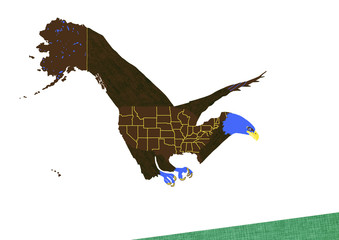 American Bald Eagle - drawing with map