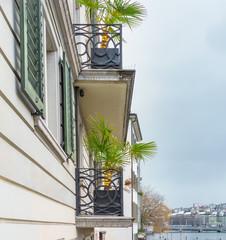 Balkon mit Palme und Weihnachtsbeleuchtung