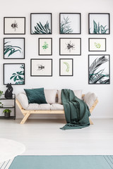 Leaves posters in living room