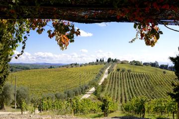 Auf dem Hügel die Villa der Tenuta Di Monaciano