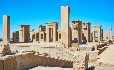 Persian history in stone, Persepolis, Iran