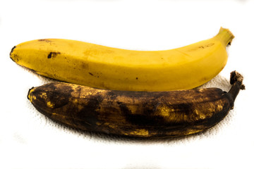 One yellow banana and one older brown banana on paper with white background