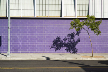 Lines and colors coming to create interesting street scene in Los Angeles, California, USA