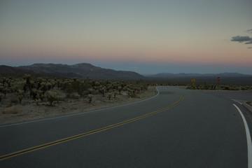Empty road in desert at sunset in Joshua Tree National Park, California, USA