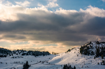 forested hillside covered with snow. lovely winter nature scenery
