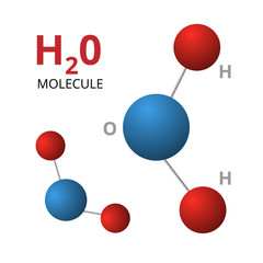Molecule H2O isolated on white background. Vector illustration of color molecules.