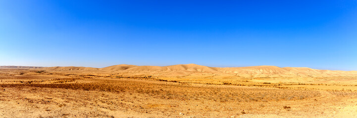Panorama of desert at winter