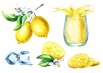 Lemon juice set with splash in the glass, fruits adn ice cubes. Watercolor hand drawn illustration