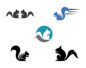 Squirrel logo template vector icon illustration design