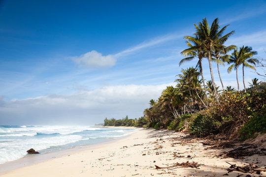 Banzai Pipeline Beach Landscape Hawaii