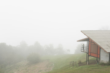 woman on terrace of house with fog on mountain in morning. tourist take photo of mist on hill.