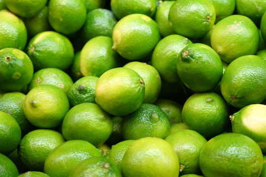 Fresh green lime pile in harvest season