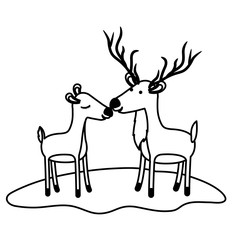 deer couple over grass in black sections silhouette on white background vector illustration