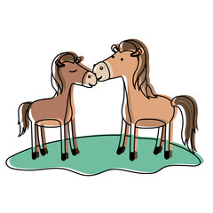 horses couple over grass in watercolor silhouette vector illustration