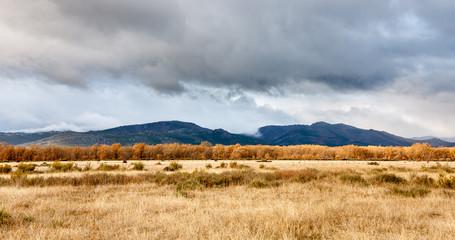 Pradera, bosque de robles y Sierra del Pinar y Teleno. Tabuyo del Monte, León.