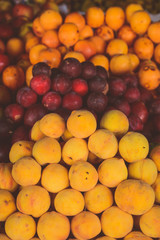 Apricots, Peaches. Fruits in a market. Vintage editing. Vertical image.