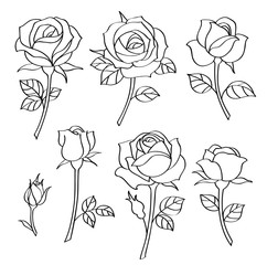 Vector set of decorative vintage roses