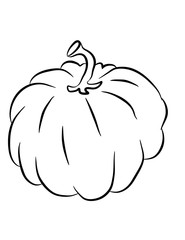 Vector illustration of a drawing of a pumpkin. Illustration for design, website, cards, Halloween and more. A picture for coloring in a black outline.