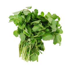 A watercress bunch on white background