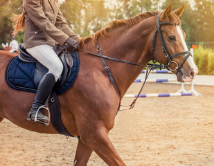 Sorrel dressage horse and rider in brown jacket performing at show jumping competition. Equestrian sport background.