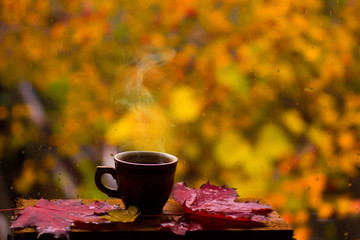 Cup of hot coffee and red leaves on window