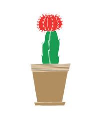 Cactus Red Mini