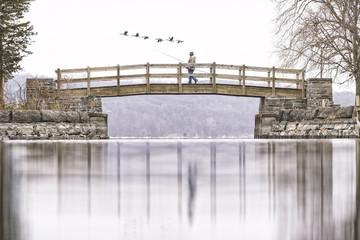 Puentes y Reflejos