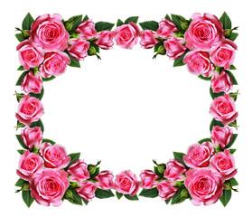 Pink rose flowers frame