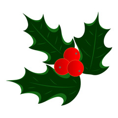 Holly leaves berries icon