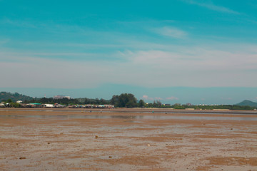 Mud flats on low tide