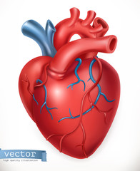 Human heart. Medicine, internal organs. 3d vector icon