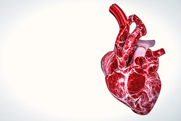 Human Heart Anatomy hearth health and disease concept 3d rendering